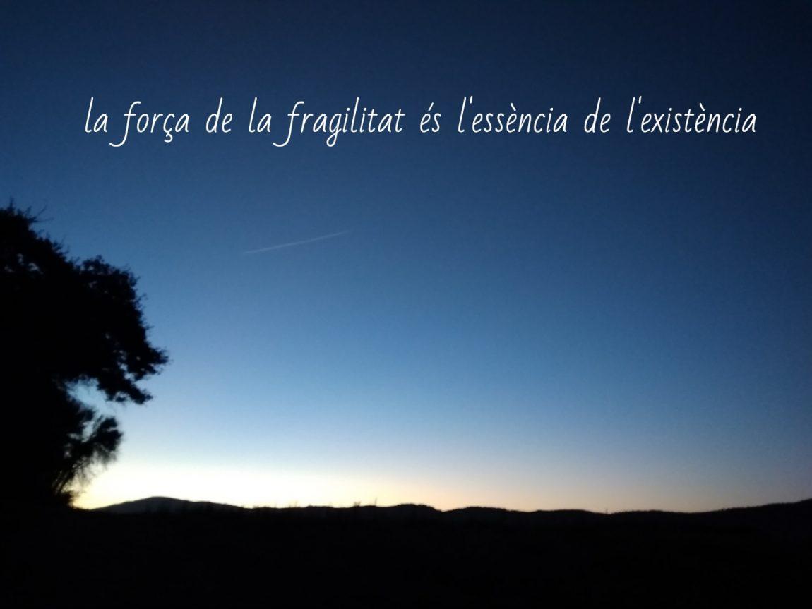 (Català) La força de la fragilitat