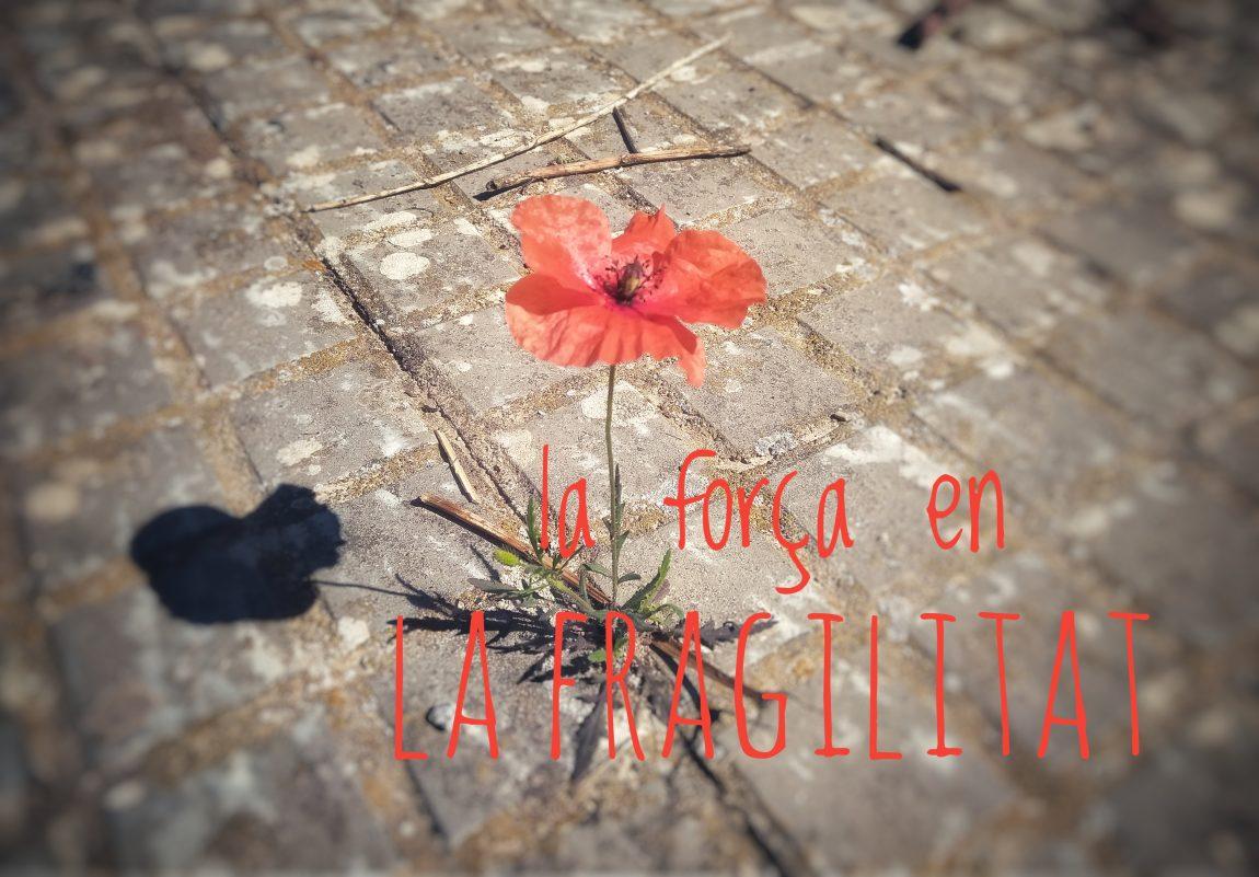 (Català) La força en la fragilitat